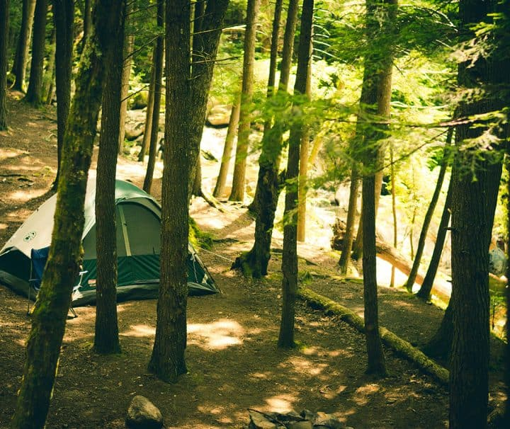 adventure camping forest 6714